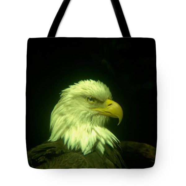 An Eagle Portrait Tote Bag by Jeff Swan