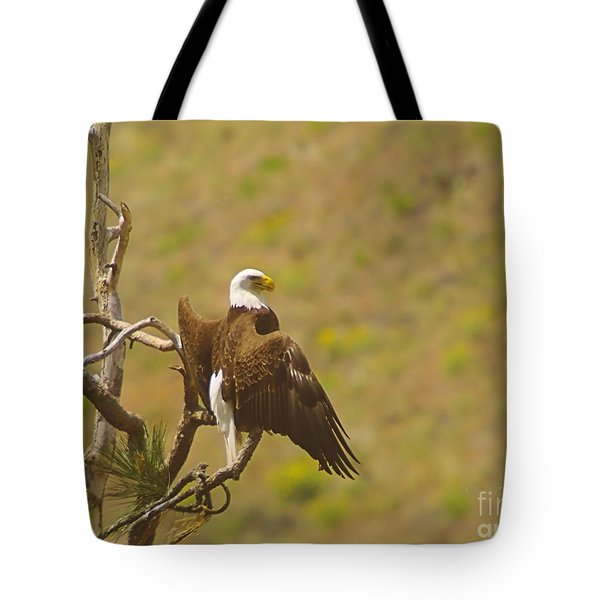 An Eagle Stretching Its Wings Tote Bag by Jeff Swan