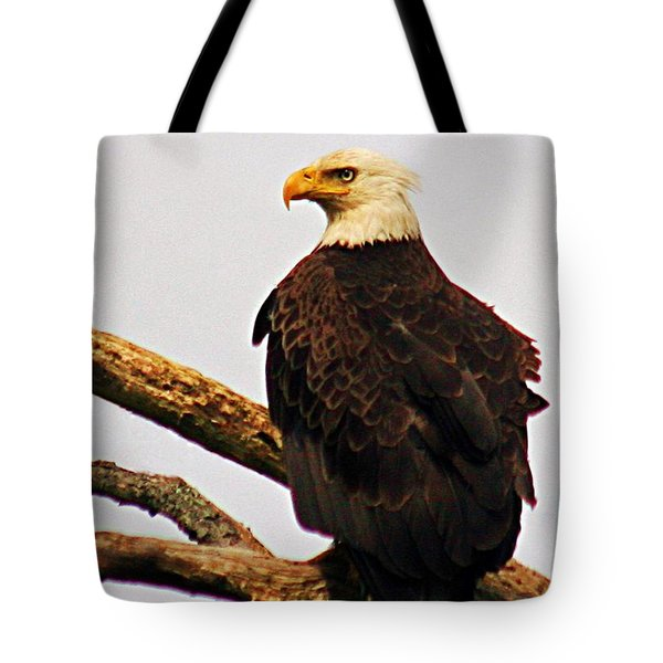 Tote Bag featuring the photograph An Eagle's Perch by Polly Peacock