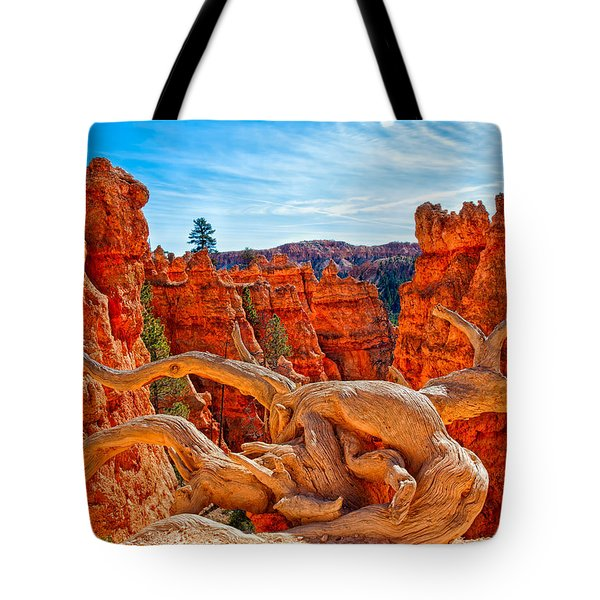 An Object For Imagination Tote Bag