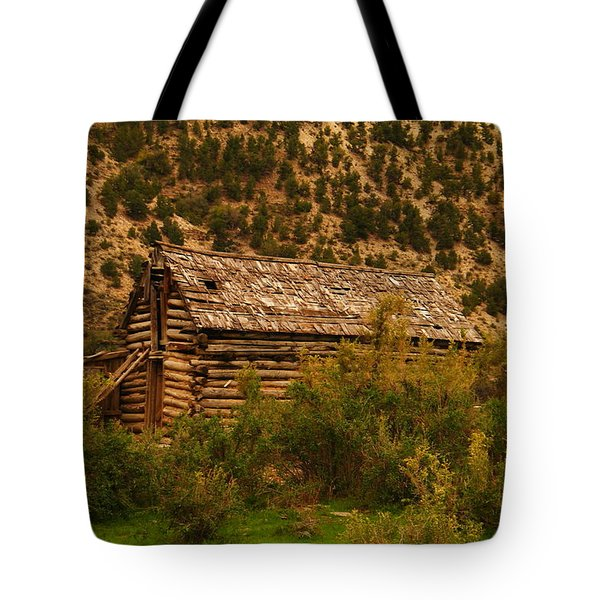 An Old Cabin In Utah Tote Bag by Jeff Swan
