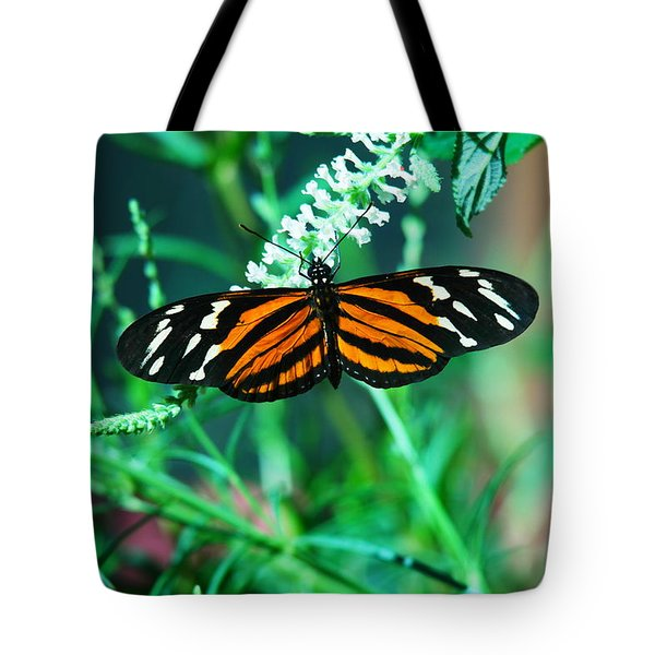 An Orange And Black Butterfly Tote Bag