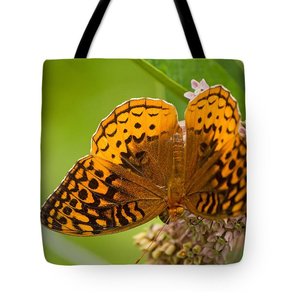 Great Spangled Fritillary Tote Bag by Rima Biswas