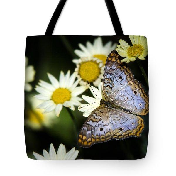 Anartia Jatrophae Tote Bag