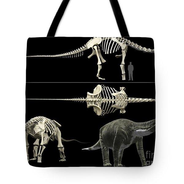 Anatomy Of A Titanosaur Tote Bag by Rodolfo Nogueira