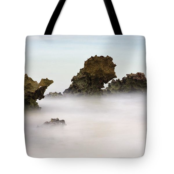Ancient Coral Tote Bag by Adam Romanowicz