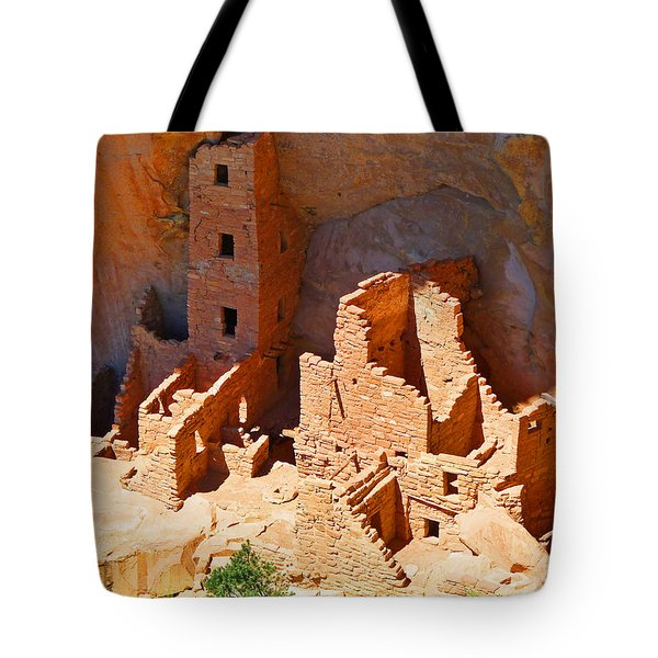 Ancient Dwelling Tote Bag by Alan Socolik