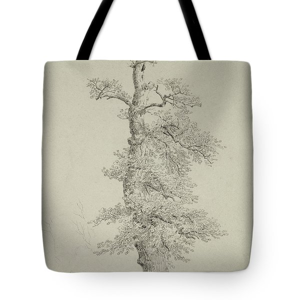 Ancient Oak Tree With A Storks Nest Tote Bag
