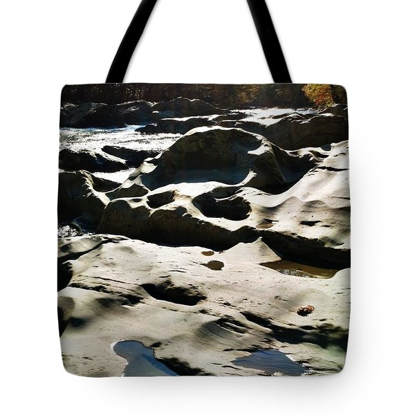 Ancient River Tote Bag by Janice Spivey