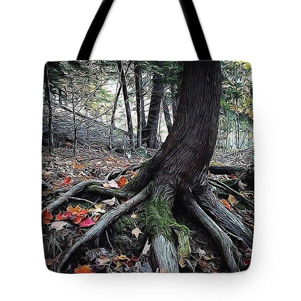 Ancient Root Tote Bag by Natasha Marco