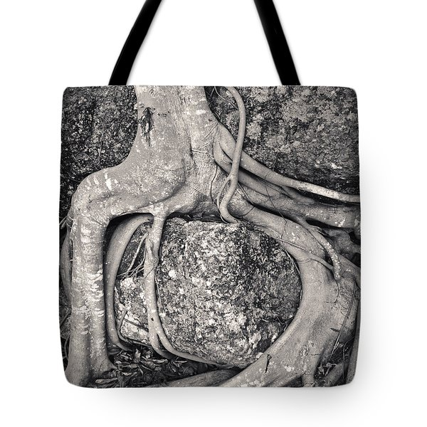 Ancient Roots Tote Bag by Adam Romanowicz