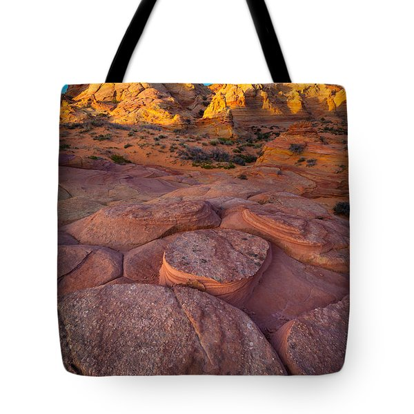 Ancient Seabed Tote Bag by Inge Johnsson