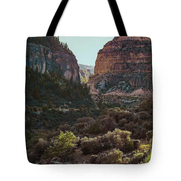 Ancient Walls In Wyoming Tote Bag by Karen Musick