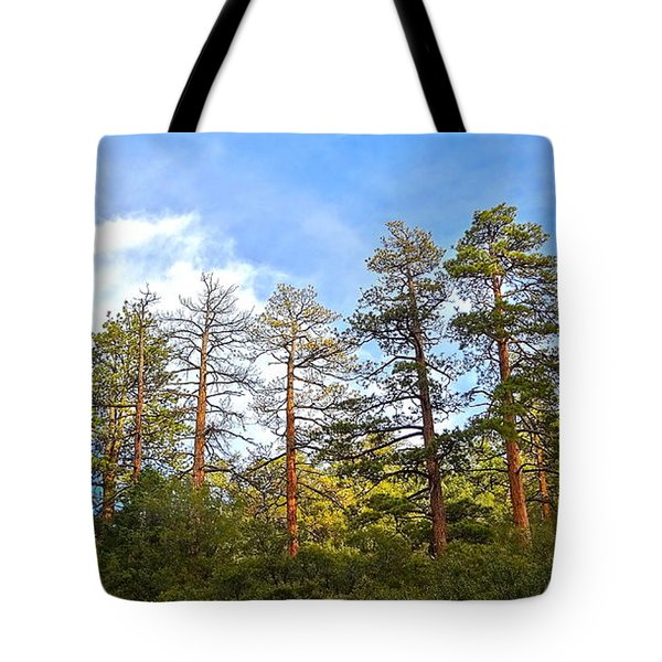 Ancient Watchers Tote Bag