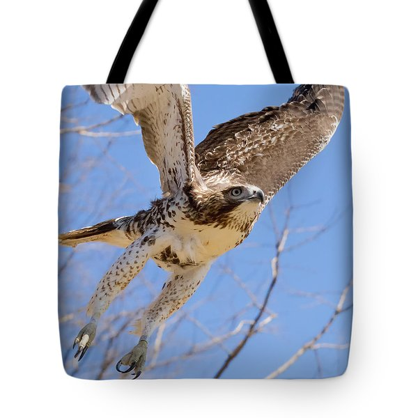 And Away I Go Square Tote Bag by Bill Wakeley