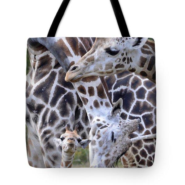 And Baby Makes Three Tote Bag