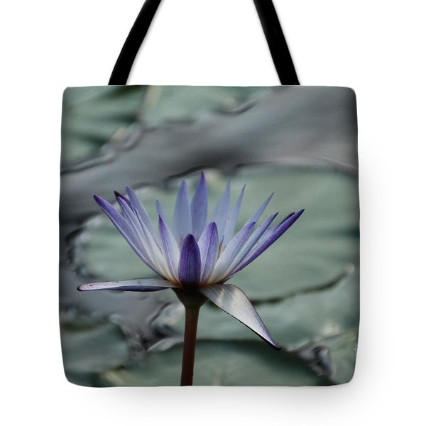 ...and Cue Lily  Tote Bag