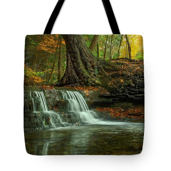 And God Proclaimed His Creation Good Tote Bag by Skip Tribby