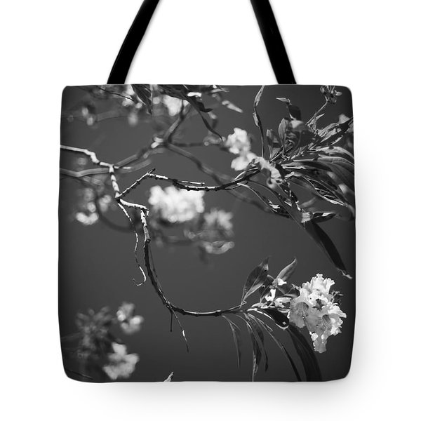 And Spring Became The Summer Tote Bag
