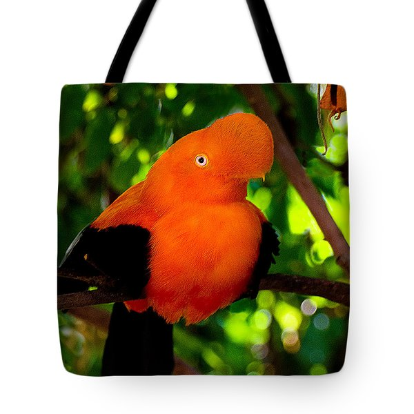 Andean Cock Of The Rock Tote Bag