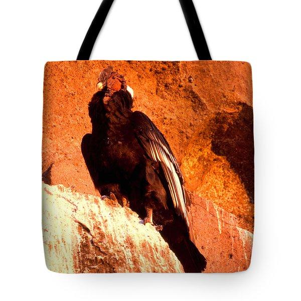 Andean Condor Tote Bag