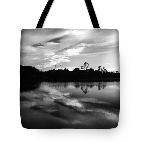 Andree Clark Bird Refuge - Santa Barbara Tote Bag by Jan Cipolla