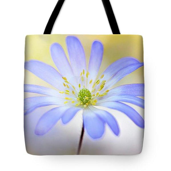 Anemone Blanda Tote Bag by Jacky Parker