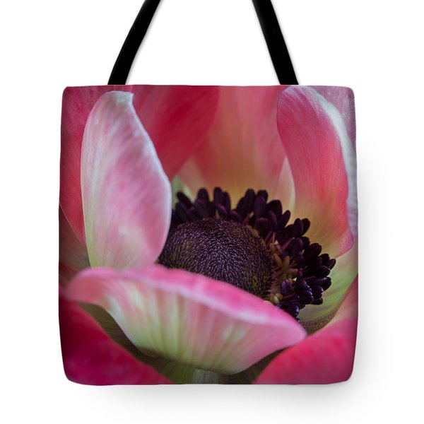 Anemone In Fuchsia Tote Bag