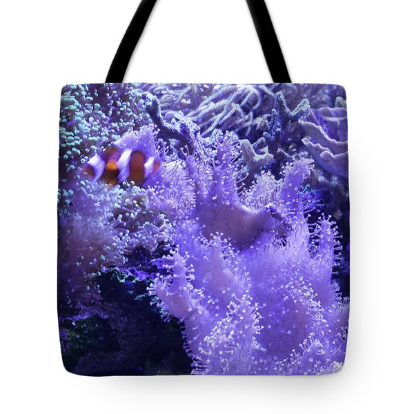 Anemone Starlight Tote Bag by Susan Molnar