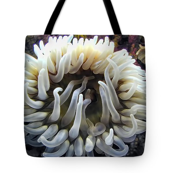 Anenome 1 Tote Bag by Dawn Eshelman