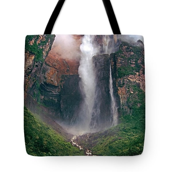 Tote Bag featuring the photograph Angel Falls In Venezuela by Dave Welling