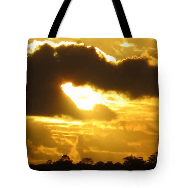 Angel In The Sunset Tote Bag