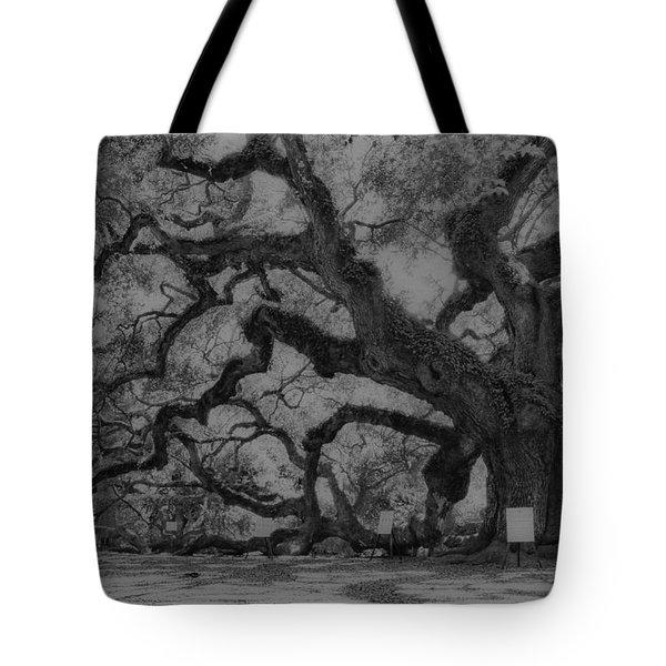 Angel Oak B And W Tote Bag