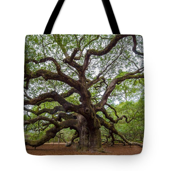 Tote Bag featuring the photograph Angel Oak Tree by Dale Powell