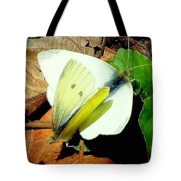 Angels Of The Morning Tote Bag by Tami Quigley