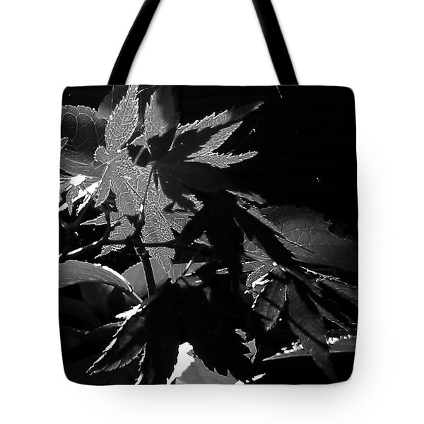 Tote Bag featuring the photograph Angels Or Dragons B/w by Martin Howard