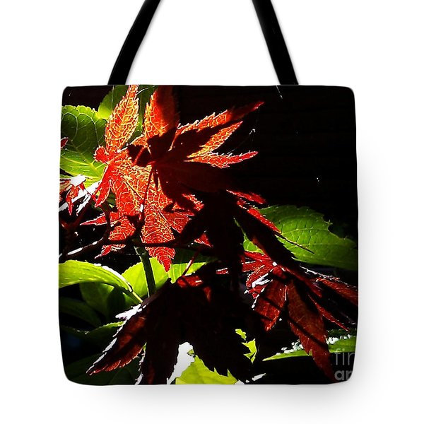 Tote Bag featuring the photograph Angels Or Dragons by Martin Howard