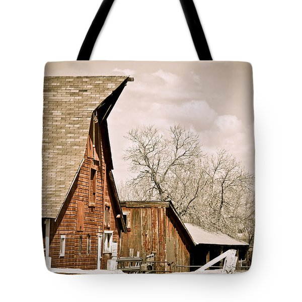 Angle Top Barn Tote Bag by Marilyn Hunt