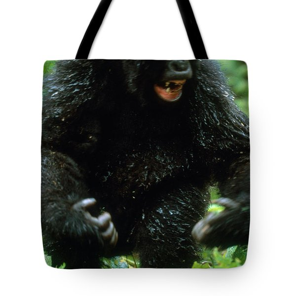 Angry Mountain Gorilla Tote Bag by Art Wolfe