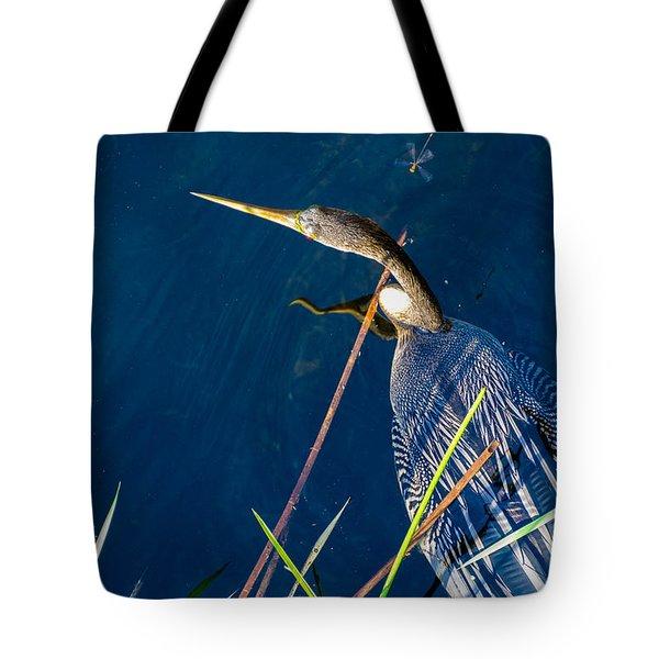 Anhinga Tote Bag