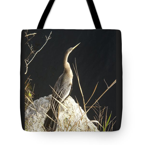 Tote Bag featuring the photograph Anhinga by Robert Nickologianis