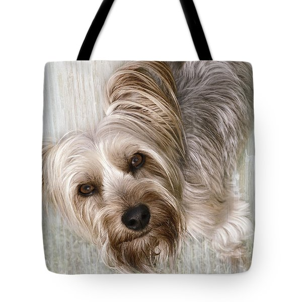 animals - dogs - Rascal Tote Bag by Ann Powell