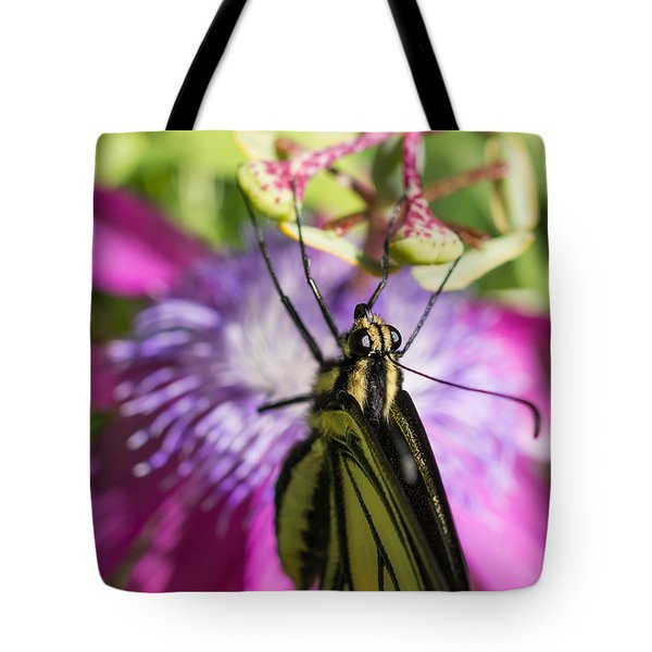Anise Swallowtail Butterfly And Passionflower Tote Bag by Priya Ghose