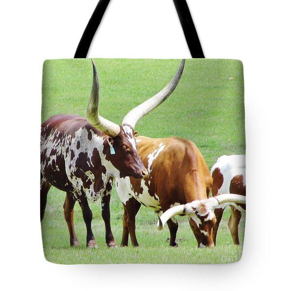 Ankole And Texas Longhorn Cattle Tote Bag