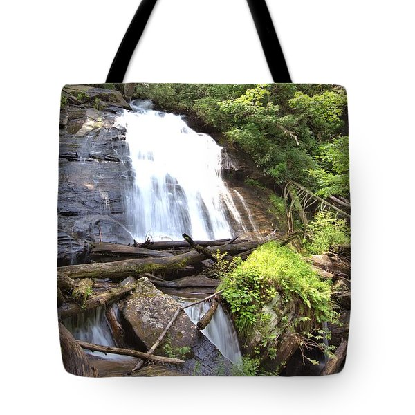 Anna Ruby Falls - Georgia - 4 Tote Bag by Gordon Elwell