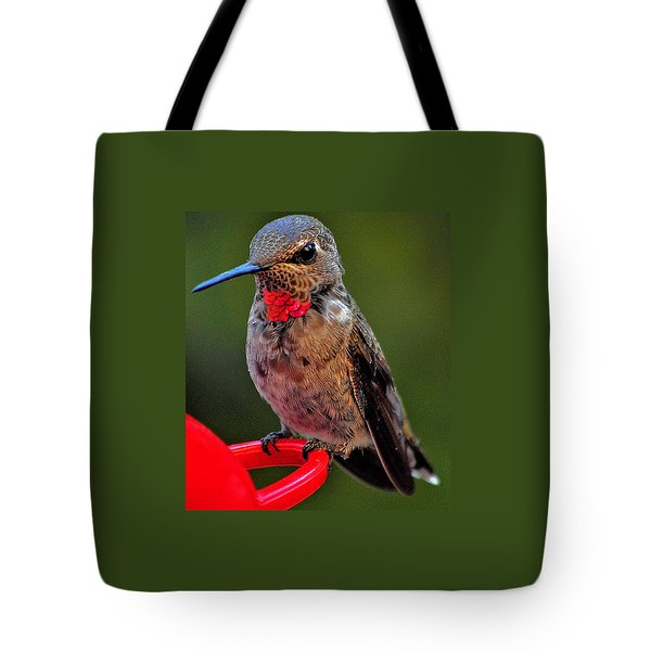 Anna's With Red Necklace Tote Bag