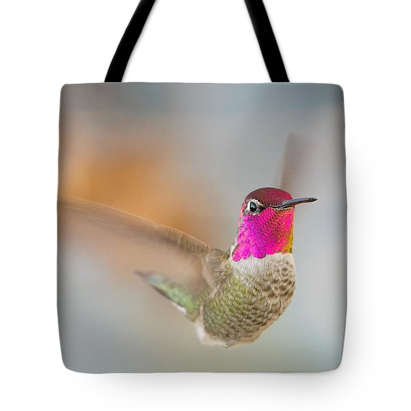 Anna's Hummingbird Tote Bag by Doug Herr