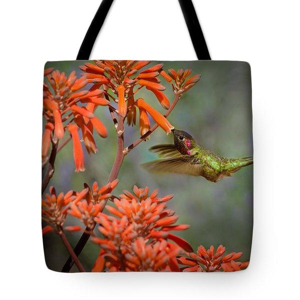 Anna's Hummingbird Tote Bag