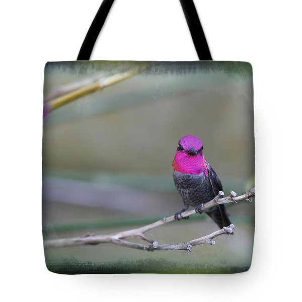 Anna's Hummingbird - Male Tote Bag by Angela A Stanton