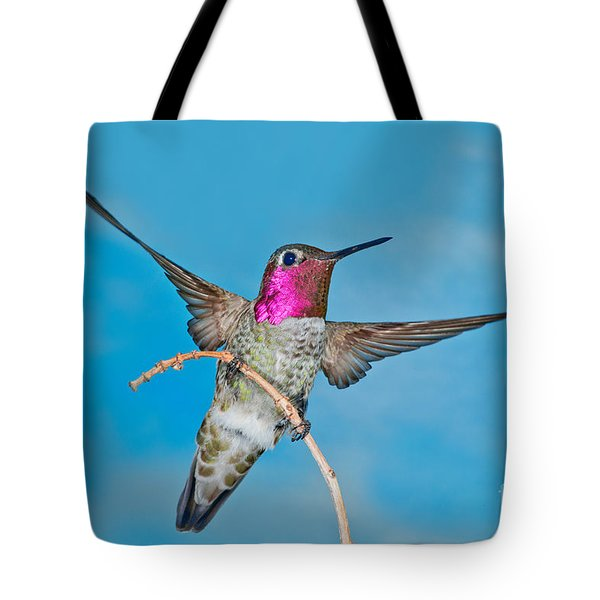 Annas Hummingbird Male Tote Bag by Anthony Mercieca